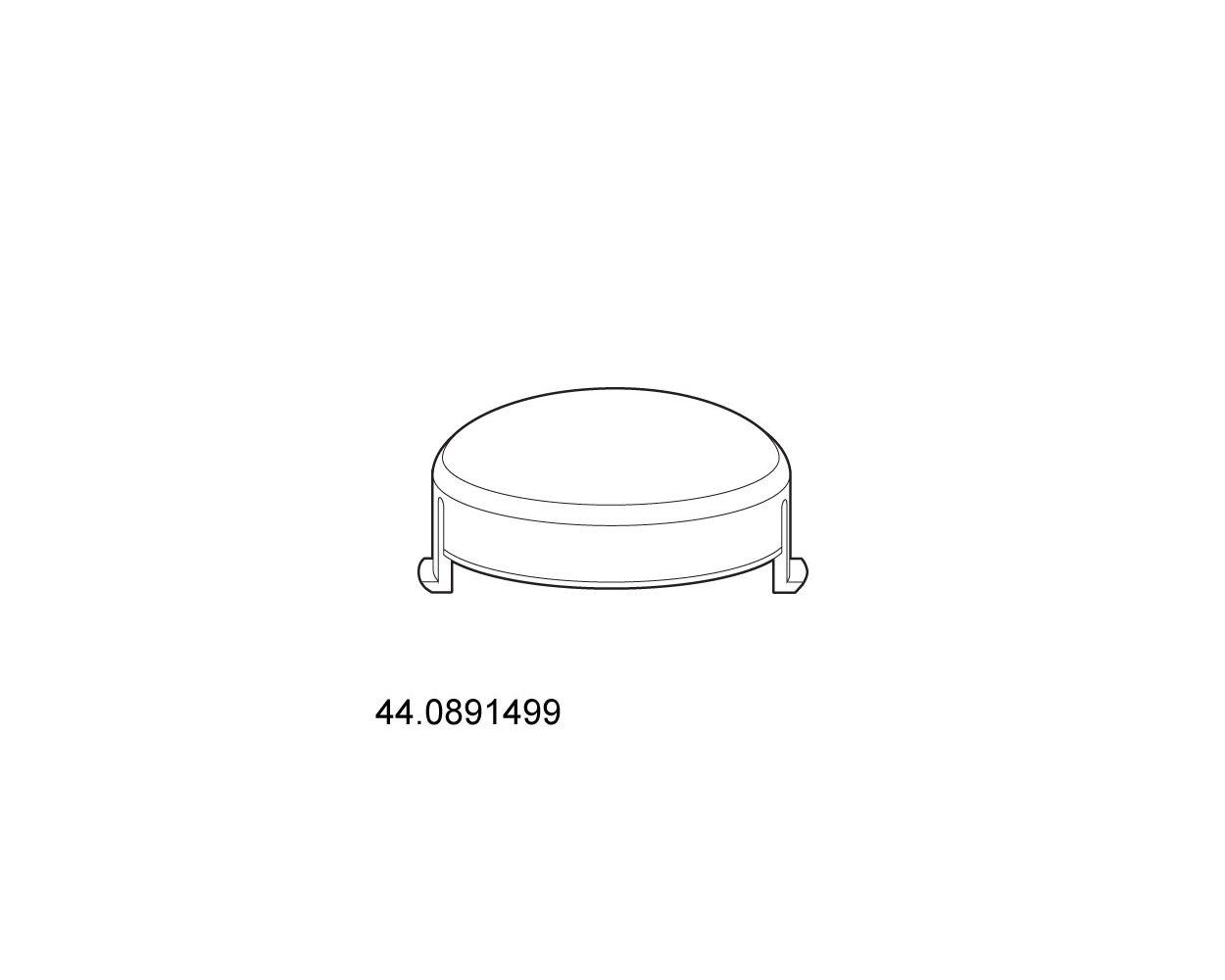 44 REAR WHEEL CAP